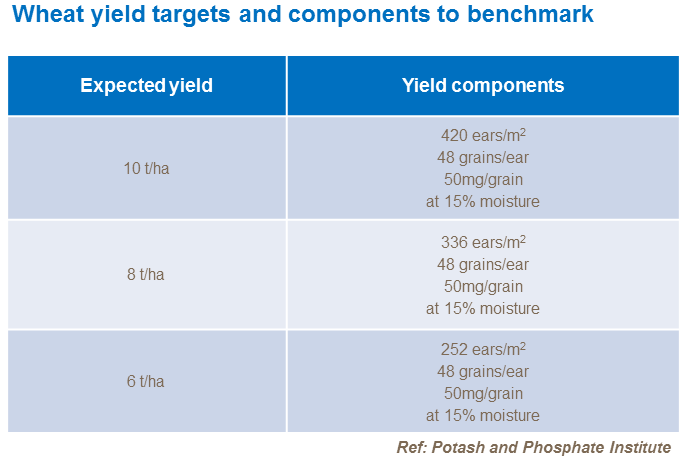 Wheat yield targets and components to benchmark